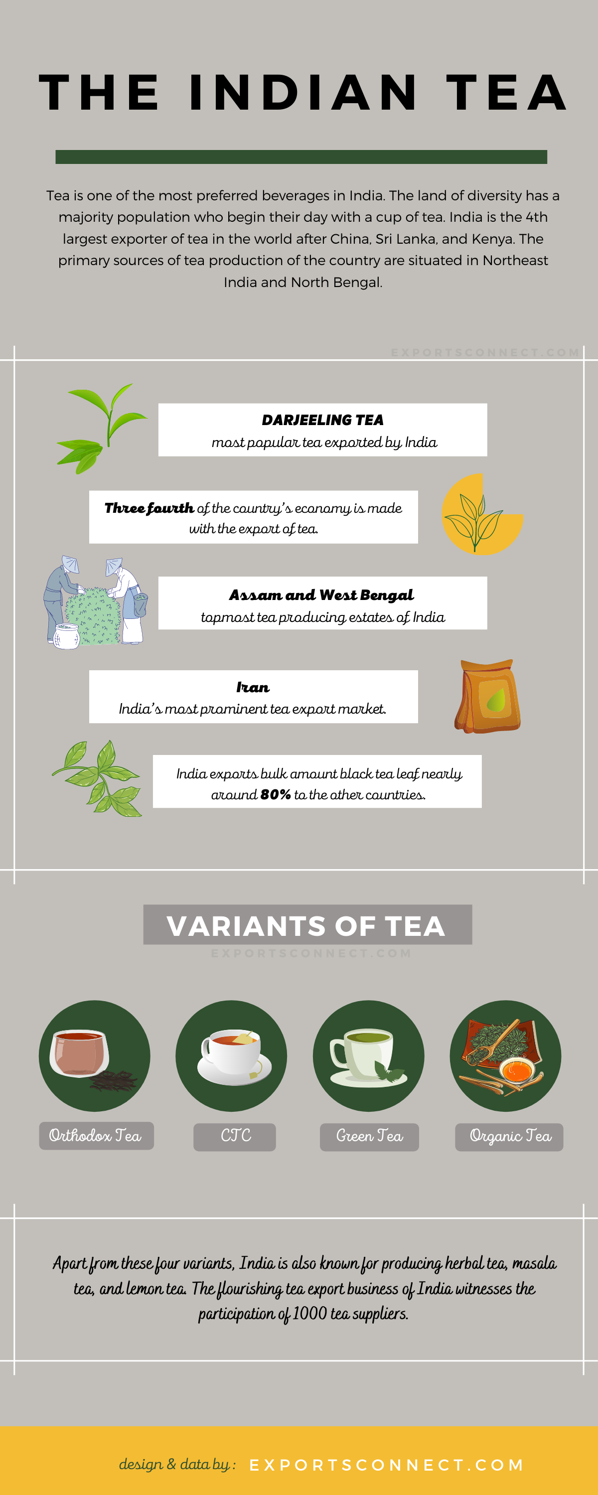 Tea Exporting Companies in India